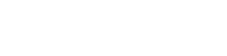 SPEED ROMANIAN TRANSPORT